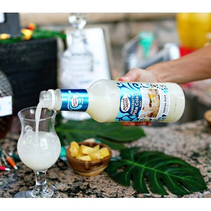 Master of Mixes Pina Colada Mixer
